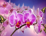 Orchids & Butterflies Painting Kit - diamond-painting-bliss.myshopify.com