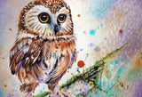 Owl DIY Painting Kit - diamond-painting-bliss.myshopify.com