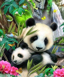Pandas, Sparrows & Butterflies - diamond-painting-bliss.myshopify.com