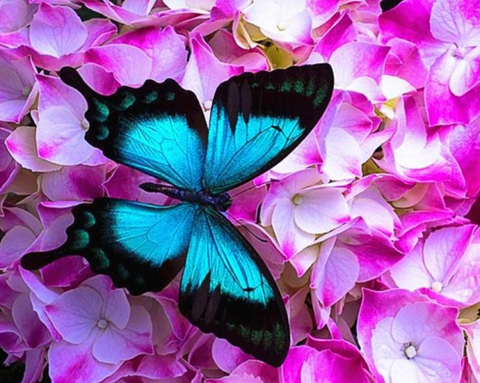 Pink Flowers & Blue Butterfly - diamond-painting-bliss.myshopify.com