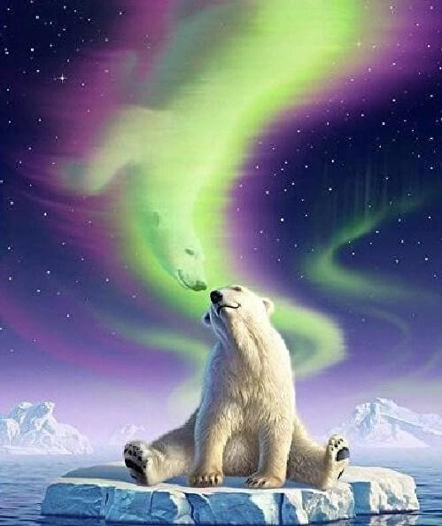 Polar Bear Northern Lights Fantasy - diamond-painting-bliss.myshopify.com