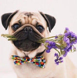 Pug Dog with Flowers - diamond-painting-bliss.myshopify.com