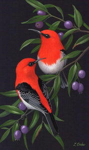 Red & Black birds - diamond-painting-bliss.myshopify.com