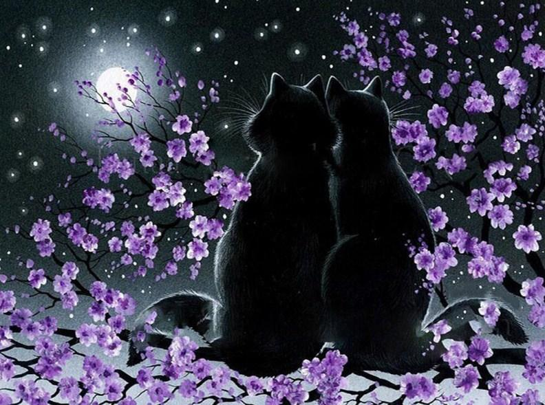 Romantic black cats - diamond-painting-bliss.myshopify.com