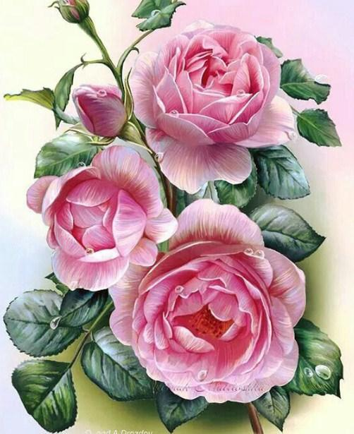 Rose Beauty - Paint by Diamonds - diamond-painting-bliss.myshopify.com