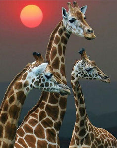 Setting Sun & Giraffe Family - diamond-painting-bliss.myshopify.com