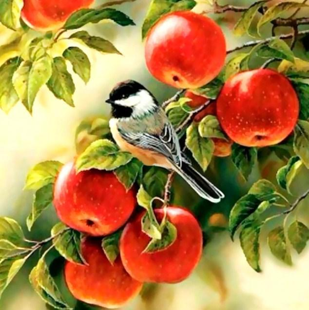 Sparrow Sitting on Apples Tree - diamond-painting-bliss.myshopify.com