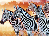 Zebras DIY Diamond Painting Kit - diamond-painting-bliss.myshopify.com