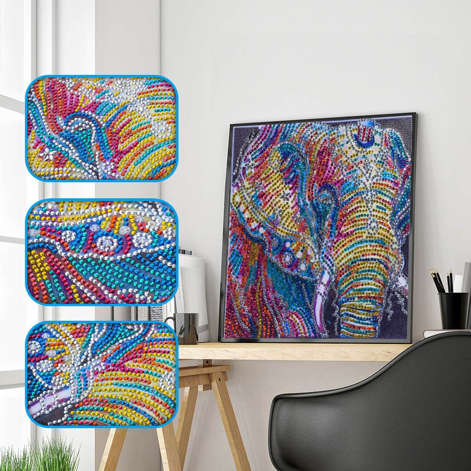 4Pcs Set Colorful Cats,Elephant And Skull Painting