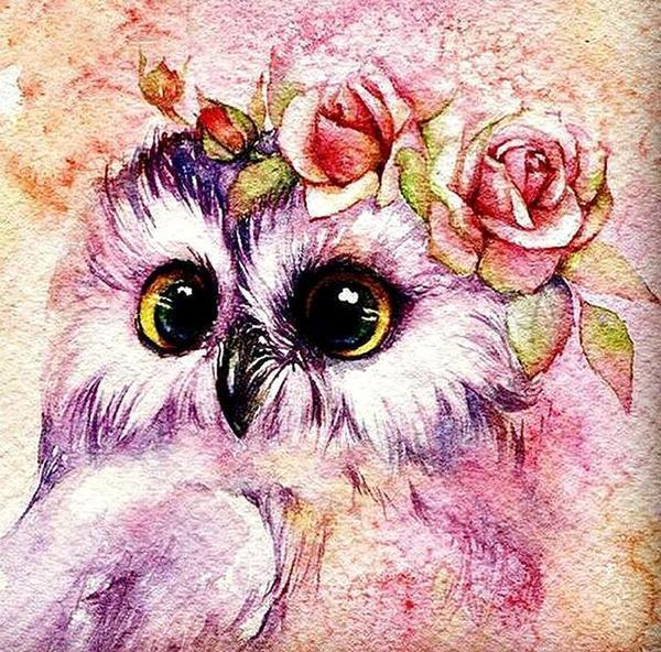 Cute Owl with Flower Crown - diamond-painting-bliss.myshopify.com