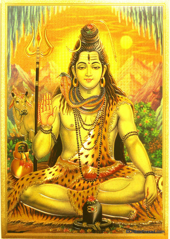 The Shiva Meditating Golden Poster - OnlinePrasad.com