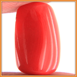 Coral (Moonga) , Zevotion Gemstone - Zevotion, OnlinePrasad.com  - 3