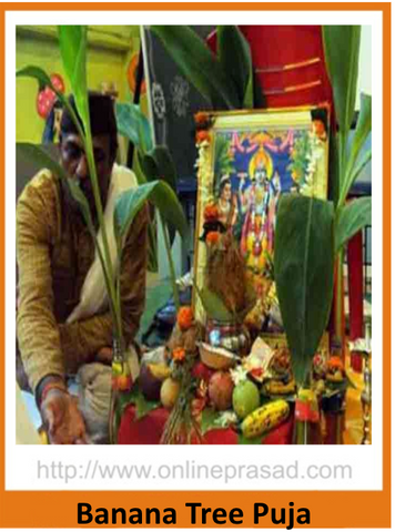Banana Tree Puja
