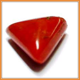 Coral (Moonga) , Zevotion Gemstone - Zevotion, OnlinePrasad.com  - 2