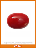 Coral (Moonga) , Zevotion Gemstone - Zevotion, OnlinePrasad.com  - 1