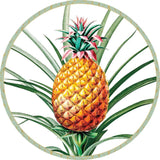 Caspari Tropical Fruit Die-Cut Coasters - 4 Per Package