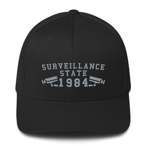 SURVEILLANCE STATE - fitted hat