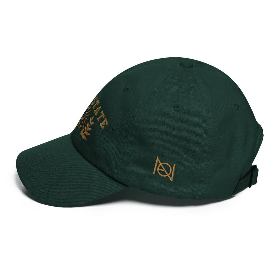DEEP STATE UNIVERSITY - dad hat