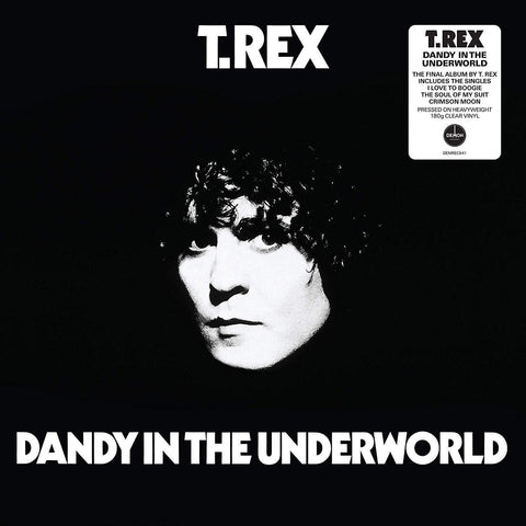 T. Rex ‎– Dandy In The Underworld