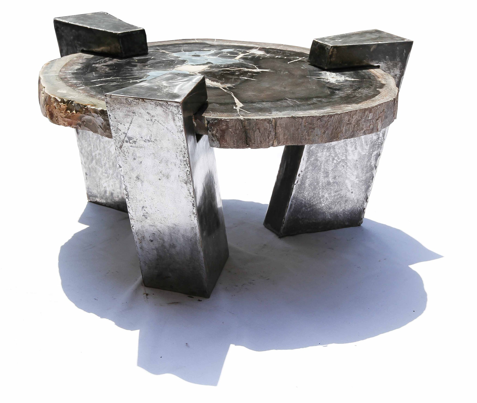 Petrified Wood and Steel Circular Coffee Table