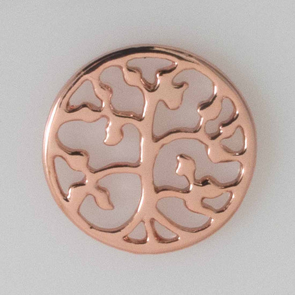 Metal 20mm bonsai cut out/ring NF RGL 2p