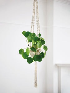 Macrame Plant Hanger Craft Kit | Make Range | Shop My Life Handmade