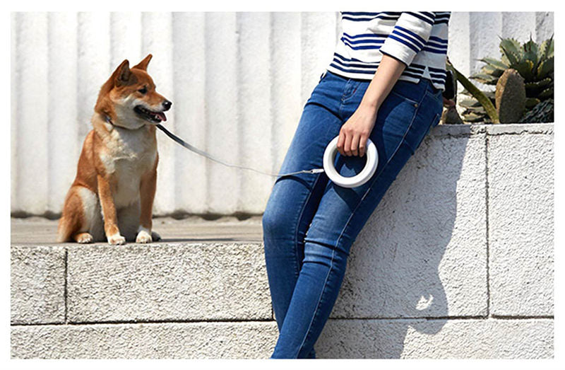 RETRACTABLE LED LEASH RING COLLAR