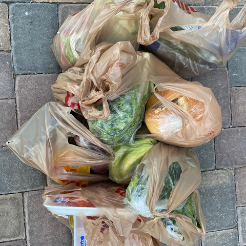 Too many plastic bags for grocery shopping