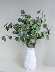 White Vase with Curly Leaves