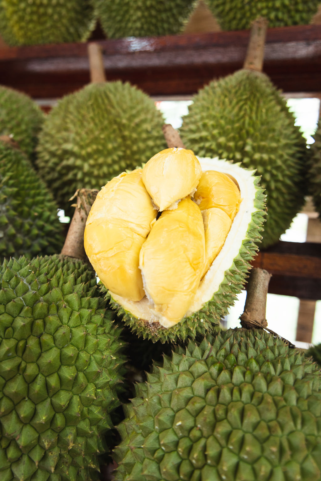 "D13 Durian @Raub (Premium Packing) Top D13 400g ""Sweet"" - MosQi"