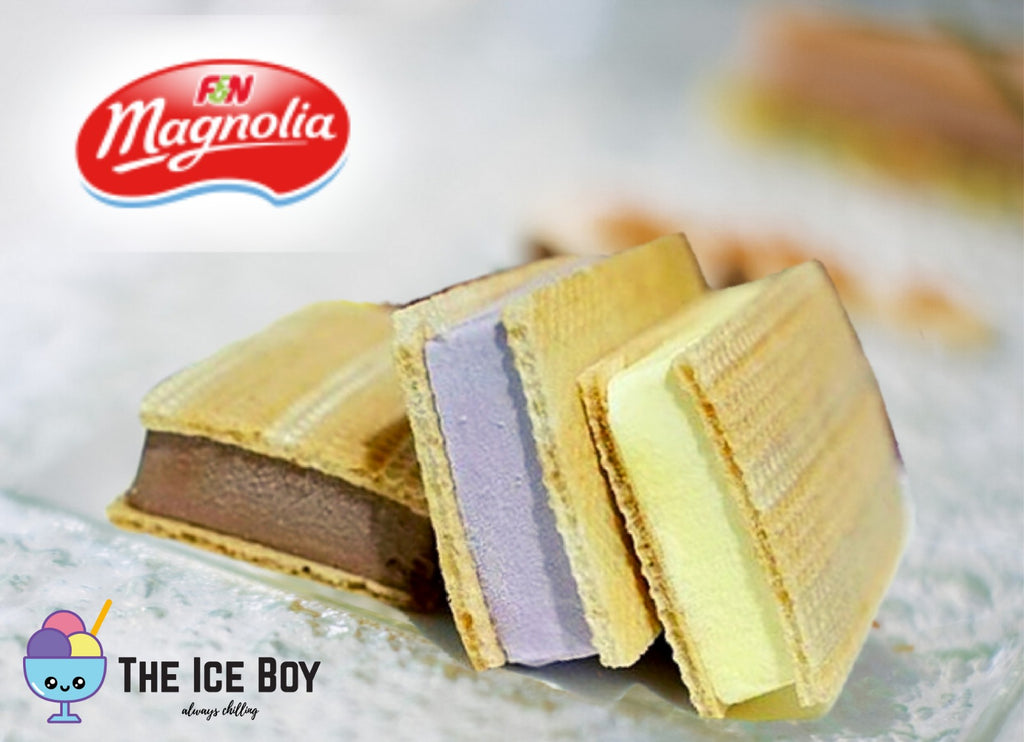 Magnolia & Evergreen Flavour Ice Cream 1L - MosQi