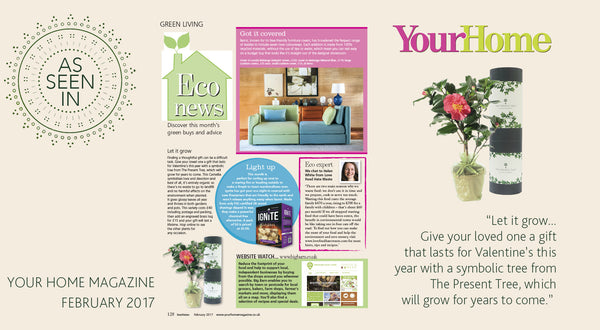 Your Home February 2017
