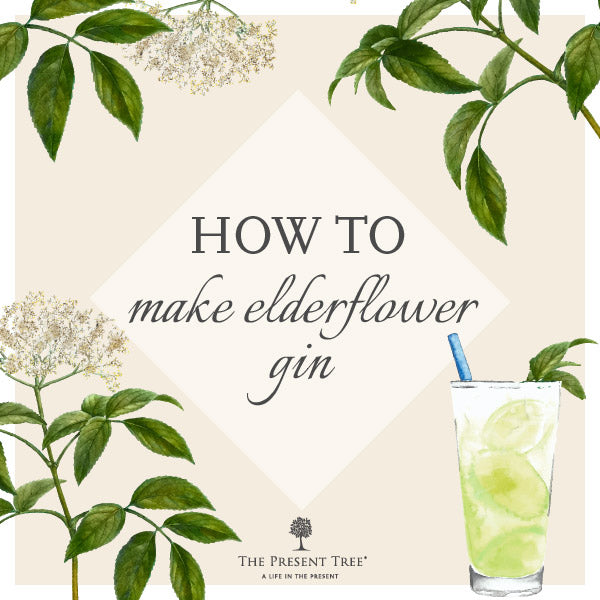 Elderflower Gin Recipe