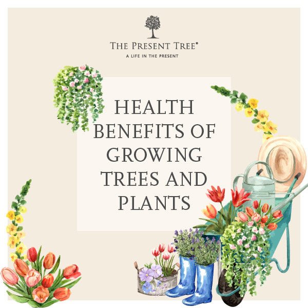 Benefits of Growing Plants
