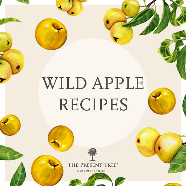 Easy Apple Recipes