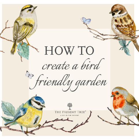 Bird Friendly Gardening