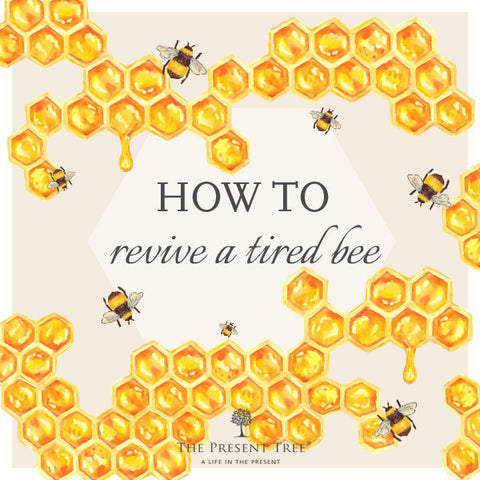 How to revive a tired bee