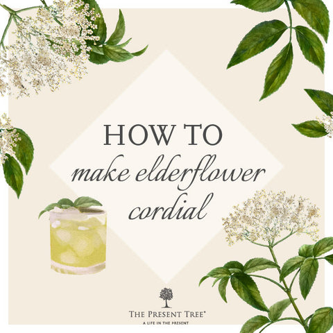 How to make Elderflower Cordial