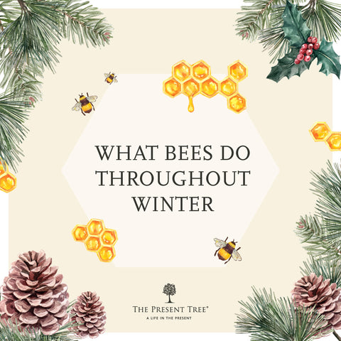 How Bees Survive in Winter