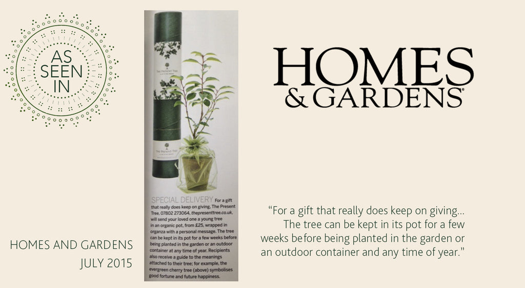 Homes & Gardens July 2015