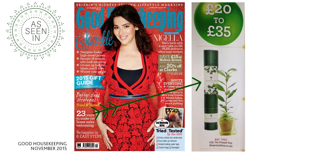 Good Housekeeping November 2015