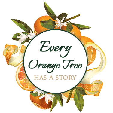 Every Orange Tree has a story