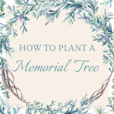 How to plant a Memorial tree