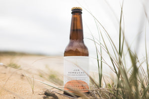 Jun Kombucha - Mandarin & Finger Lime (4% alc/vol)