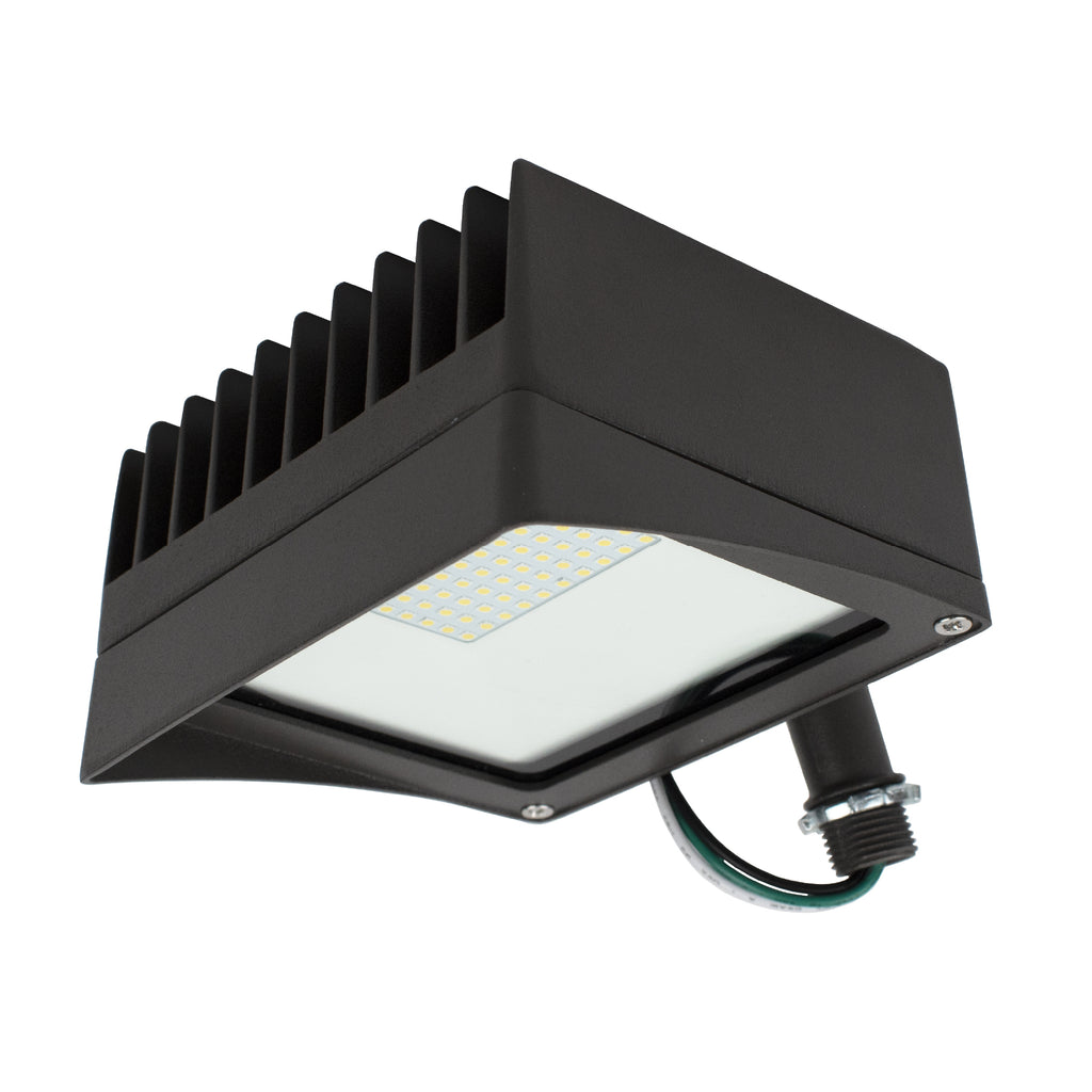 CLEANLIFE® LED Flood Light 30W