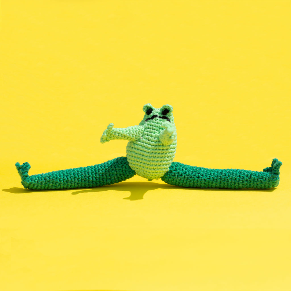 Hand Crochet Frog Dog Toy