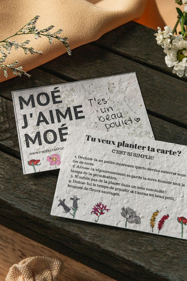 Carte plantable MOÉ J'AIME MOÉ Atoca - coffret cadeau self love