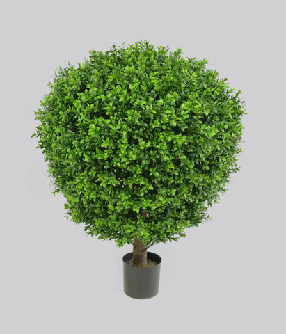 Boxwood Ball, 1007-050