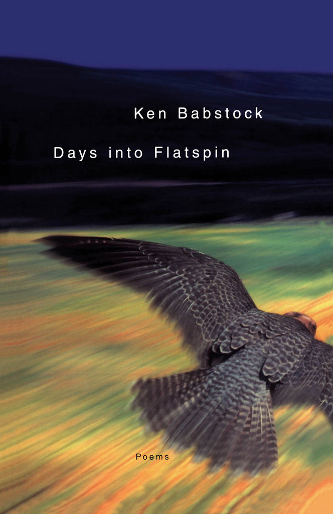 Days Into Flatspin Signed Paperback Edition