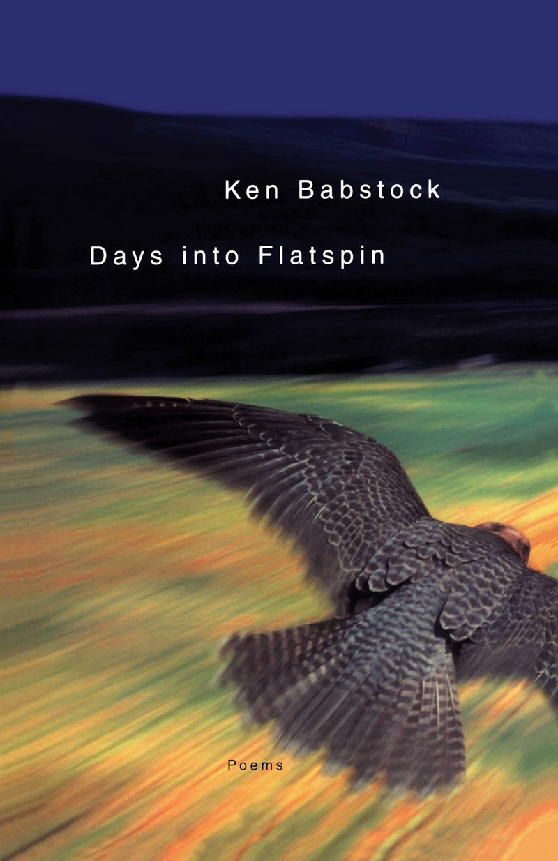 Cover of Days Into Flatspin Signed Paperback Edition